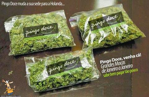 Pingo doce na Holanda
