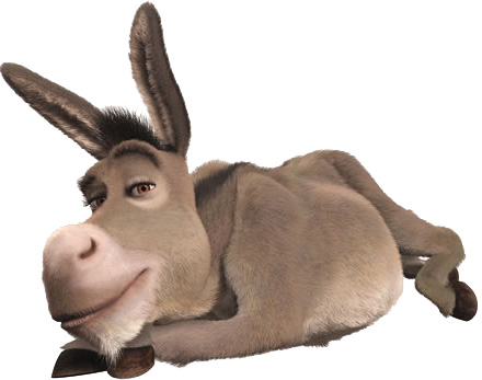 O burro do Zé