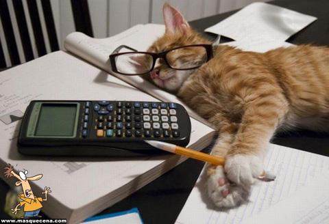 Que se lixe o teste, eu vou dormir.