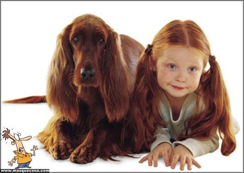Cães e os seus donos - foto 2