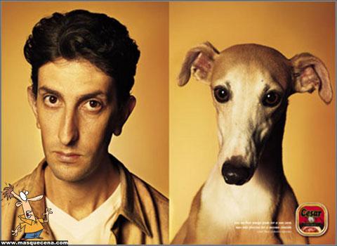 Cães e os seus donos - foto 6