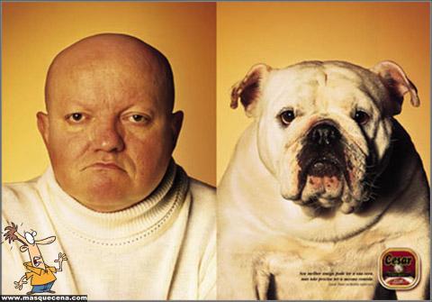 Cães e os seus donos - foto 9