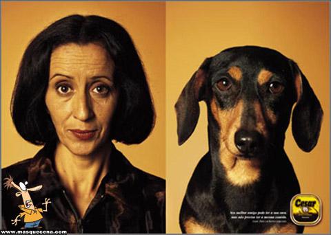 Cães e os seus donos - foto 10