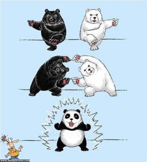 A origem dos pandas vem da fusão entre um urso negro e um urso branco
