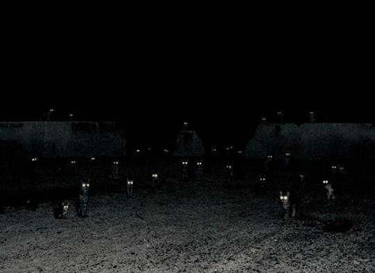 Fotografia surreal de Andrea Galvani. Conjunto de gatos na escuridão.