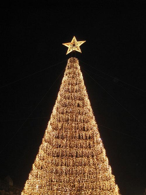 Iluminações de Natal no Porto 2012