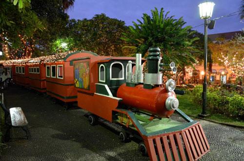 Comboio no Jardim Municipal, Funchal